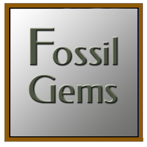 Fossil Gems