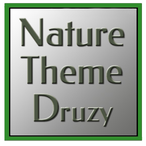 Nature Theme Druzy