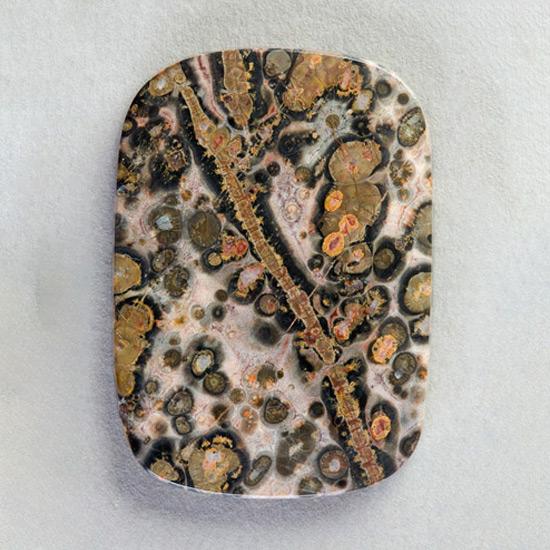 DLML16 Leopard Skin Jasper Cabochon Brown and Black Stone Cabochon