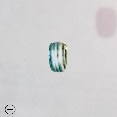 Blue Turbo Shell