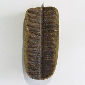 Fern Fossil Pendant, positive