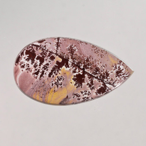 Sonoran Dendritic Jasper