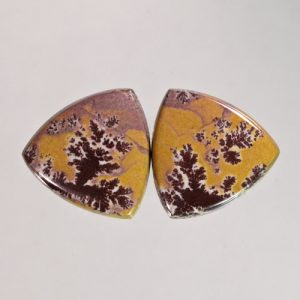 Sonoran Dendritic Jasper Pair