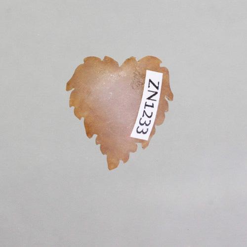 Genovese Cinnamon Druzy Leaf